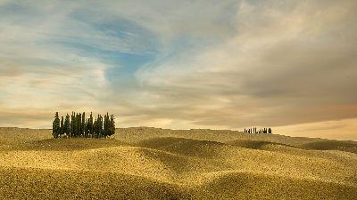 Tuscan Hills, Steward  Duncan , England