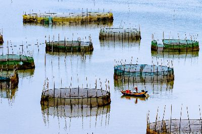 Lonely Boat, Chang  Jen-chieh , Taiwan