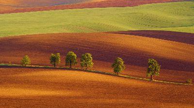 Coloured Layers, Ciorba  Cerasela , Romania
