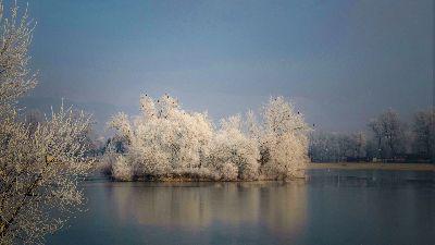 Frost On The Lake, Lovric  Zrinka , Croatia