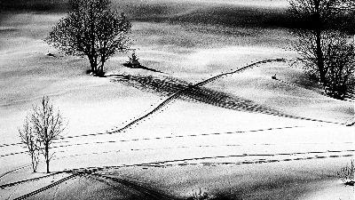 Spuren Im Schnee, Streitfelder  Theodor , Austria