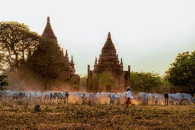 Myanmar Cowboy, Win  Wunna , Myanmar