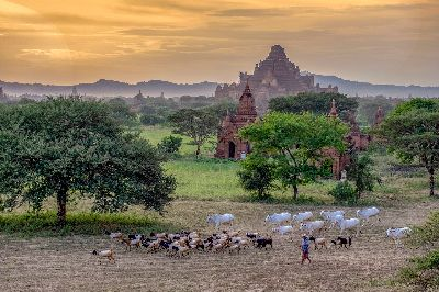 Bagan Living Style, Win  Wunna , Myanmar