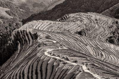 Guilin Rice Terraces-5-mono, Arkhipov  Dmitry , Russian Federation