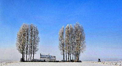 Landschap En Fietser, Lybaert  Daniel , Netherlands