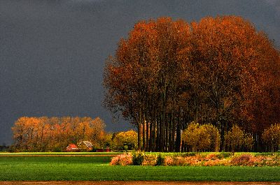 Scherpenheuvel, Lybaert  Daniel , Netherlands