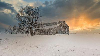 Winter At The Farm, Zimmerman  John , Canada