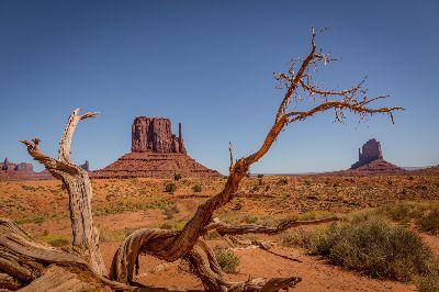 Navajo Tribal Park, Panhuyzen  Jacky , Belgium
