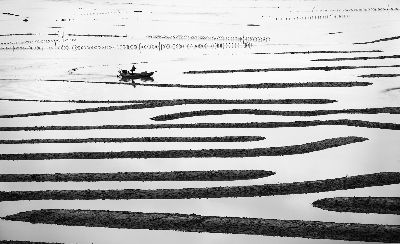 Water Maze 2, Luo  Robin , Canada