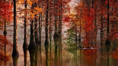 Autumn Musical Note, Zheng  Kai , China