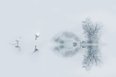 The Morning Mist Filled The Air, Zheng  Kai , China