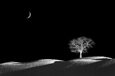 Moonlight, Zheng  Kai , China