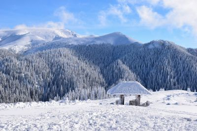 Winter Coming, Erika  Bartha , Romania