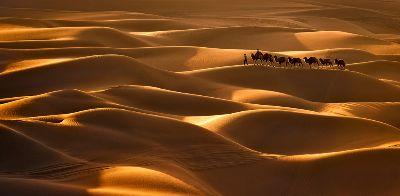 Gold Sand Sea, Chen  Xinxin , China