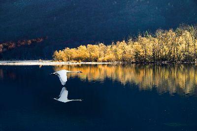 Lassen, Suljanovic  Jasmin , Slovenia