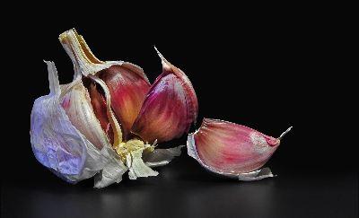 Colourful Garlic, Pelser  Sussa , South Africa