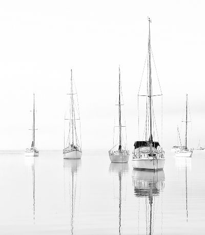 Early Morning Fog, Whyte  David , Australia