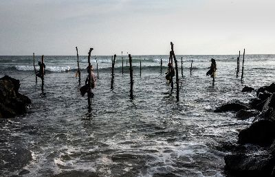 Stilt Fishing-1967, Sarkar  Partha Sarathi , India