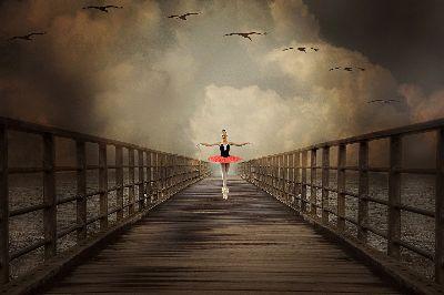 LIFE IS DANCE AND FLIGHT, Rusu  Adela Lia , Romania
