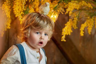 Chickens, Bazhenovskaya  Anna , Russian Federation