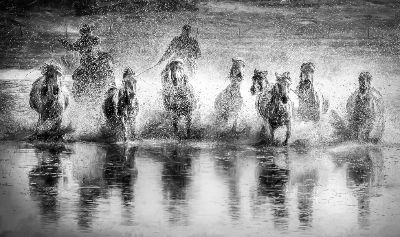 Against The Water, Nguyen  Thinh , Usa