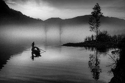Misty Morning, Nguyen  Thinh , Usa