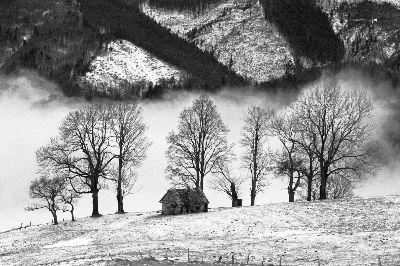 Winter Realm 43, Baleanu  Razvan , Romania