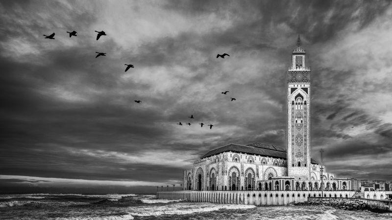 Hassan II Mosque, Stoffl  Bernd , Australia