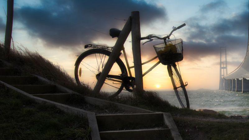 Bike & Bridge, Martens  Per , Denmark