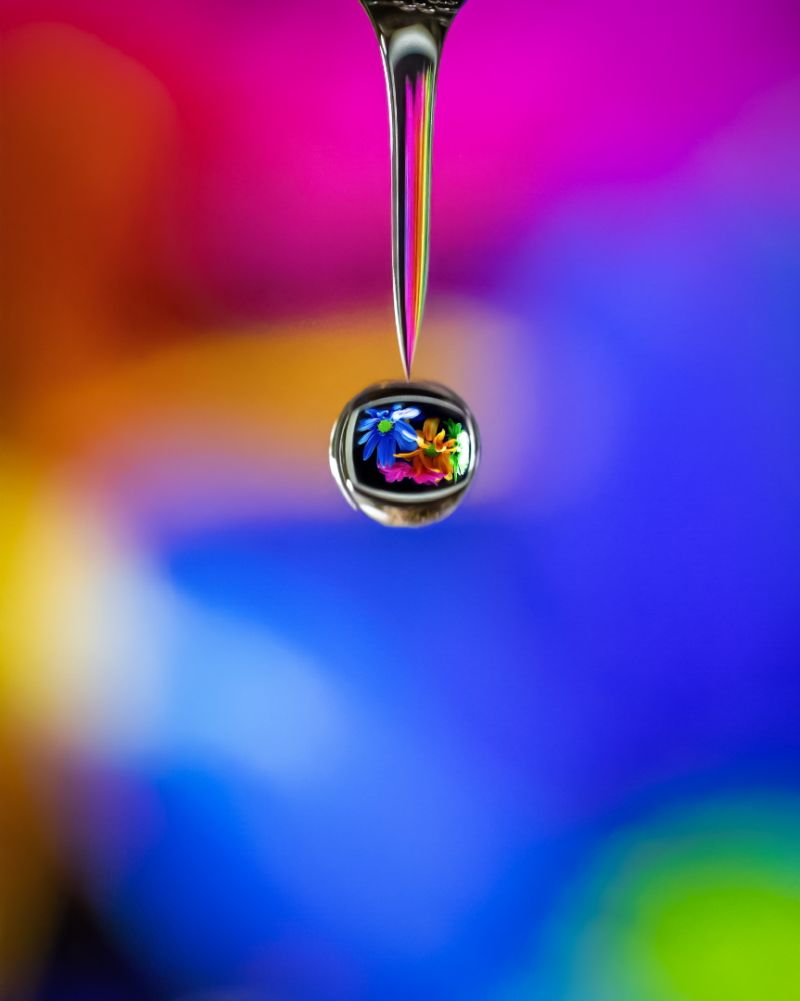 Water Droplet, Xu  Wei , Usa