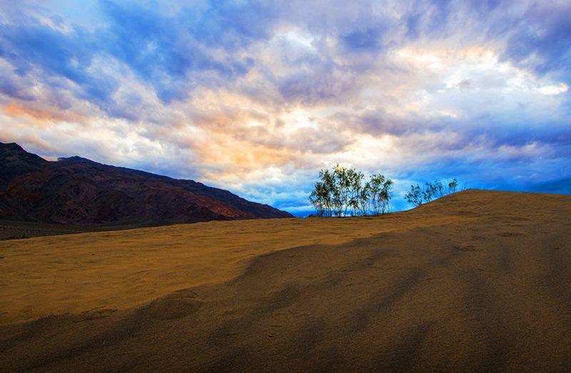 Desert Sunrise, Tran  Minhdung , Usa
