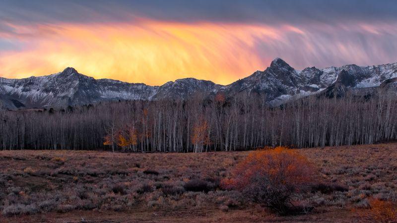 Fire Cloud Of Colorado, Fan  Jin , Usa