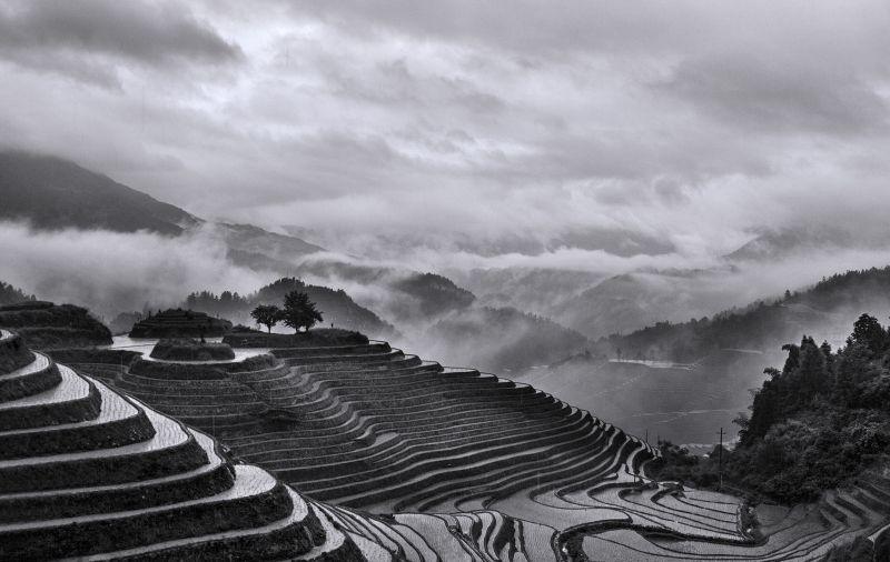 Cloudy Field, Chan  Kit Bing Christine , Hong Kong