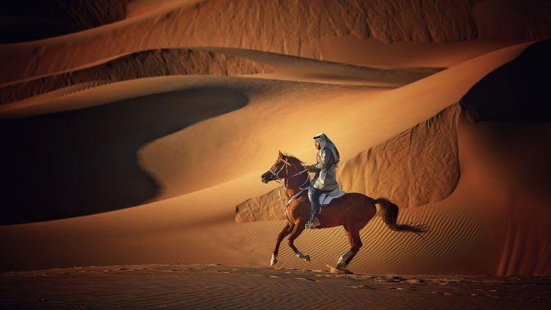 Knight, Alqahtani  Amani , Saudi Arabia