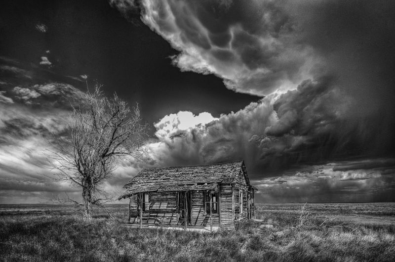 Storm A Coming, Schnelzer  Jr , Usa