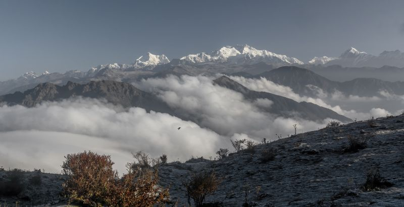 Mt Kanchenjunga, Jana  Partha Pratim , India