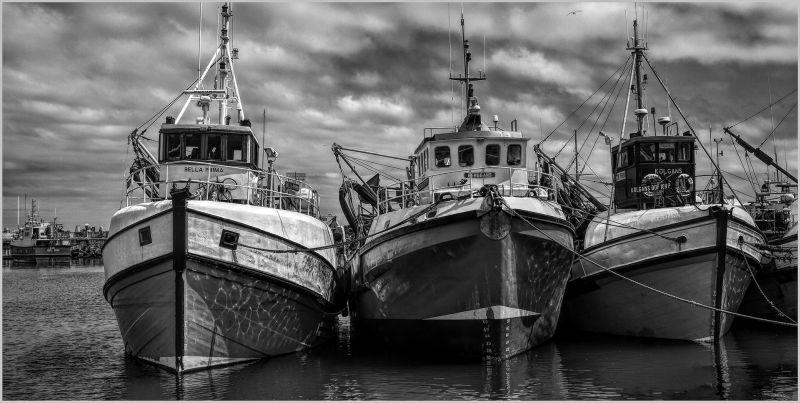 Gansbaai Fishing Boats, Wilson  David , South Africa