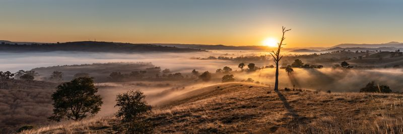 Acheron Cutting Dawn Pano, Moritz  Vicki , Australia