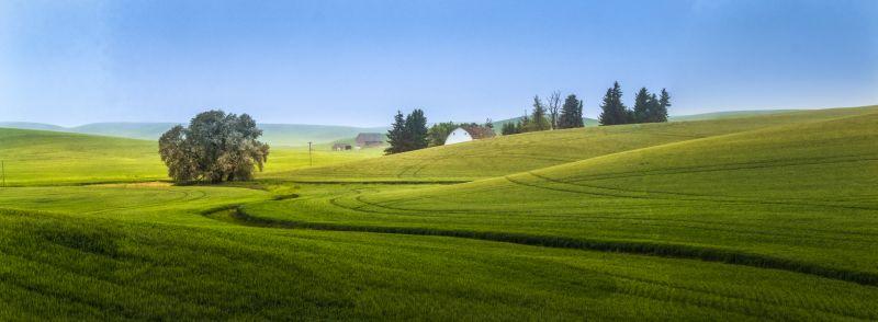Spokane Landscape13, Chiu  Bob , Usa