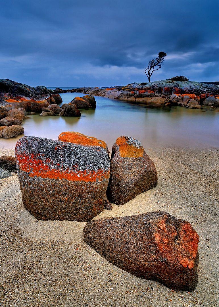Binalong Bay Stormy Dusk, Cannon  Wally , Australia