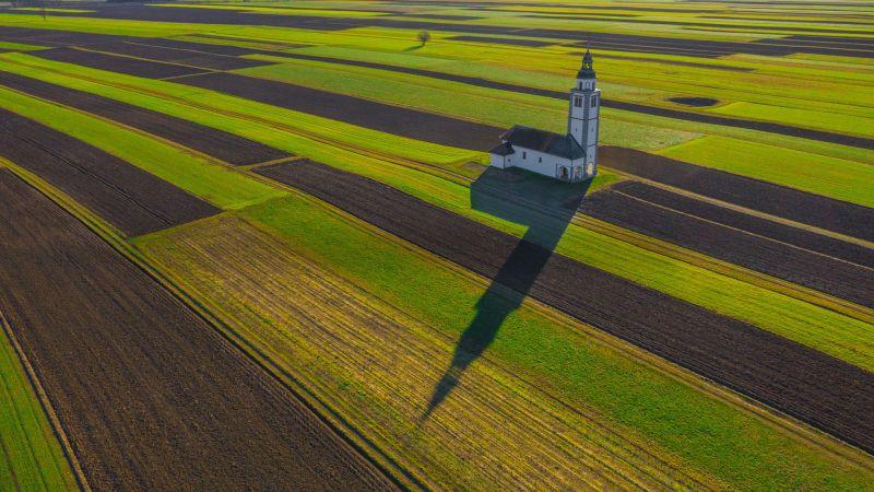 Shadow In The Field, Balantic  Peter , Slovenia