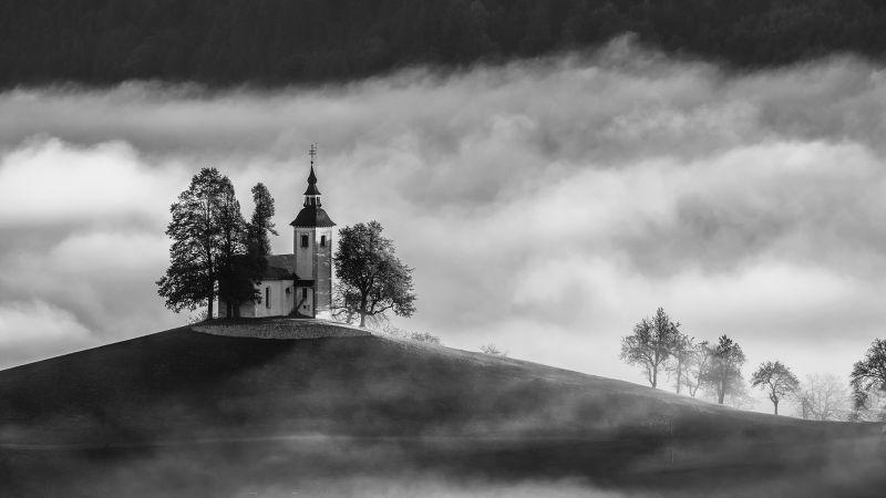Foggy Morning, Balantic  Peter , Slovenia