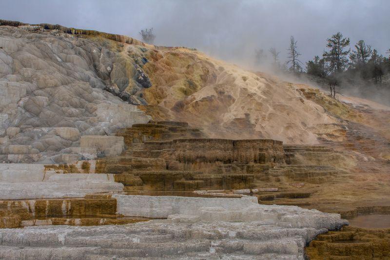 Mammoth Hot Springs 9513, Carder  Nan , Usa