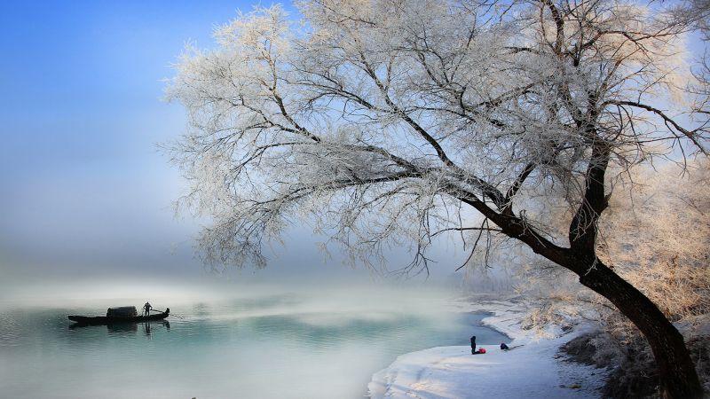 Lai Huat NG Winter Time